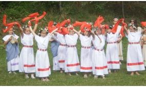 Festival anul 2011
