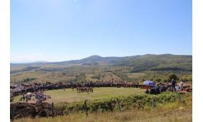 Festival anul 2013